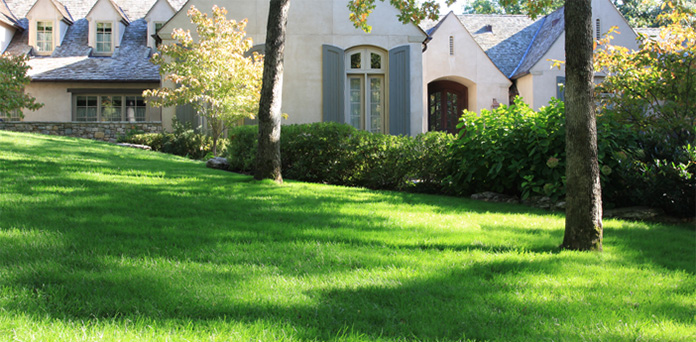 oklahoma-landscape-Lawn Maintenance-2